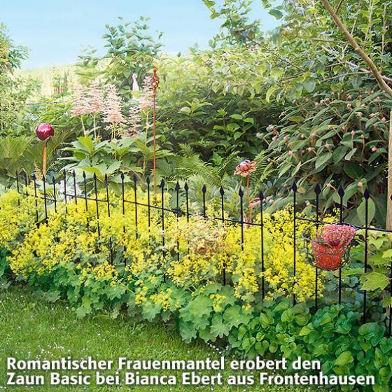 Gartenzaun Basic, 3er-Set | #2