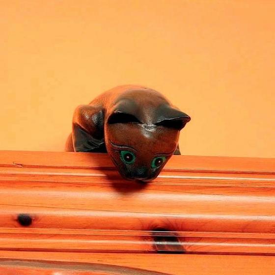 Kätzchen Stupsi | #2