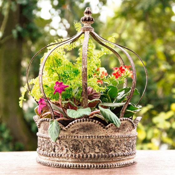 Pflanzen-Krone Corona | #2