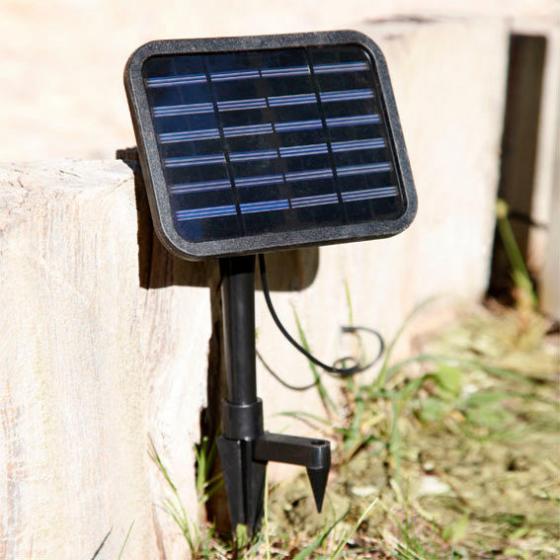 Solar-Brunnen Frosch | #2