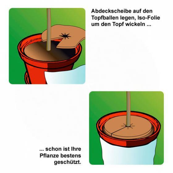 Kokos-Abdeckscheiben, 2er-Set, 37 cm, Kokos, braun | #2