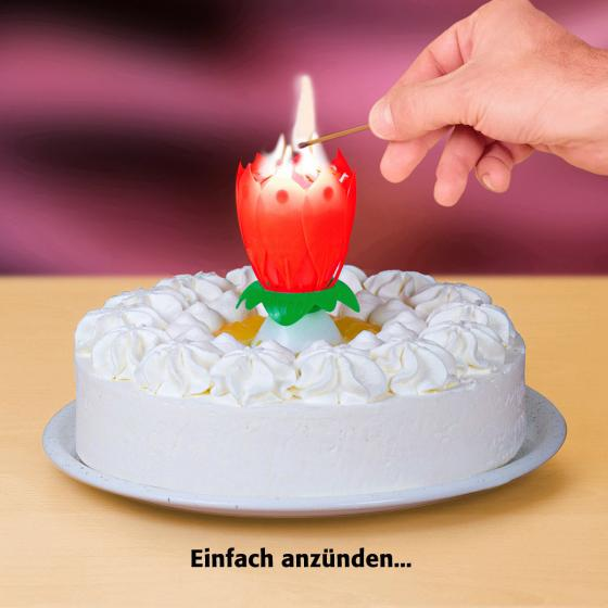 Musikalische Wunderkerze Happy Birthday | #2