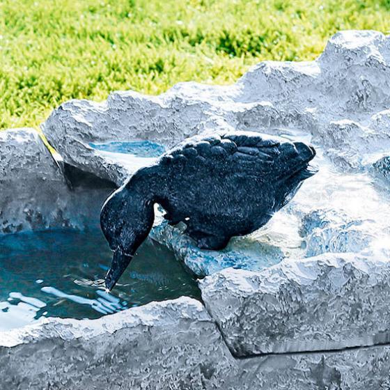 Wasserspiel mit Enten | #2