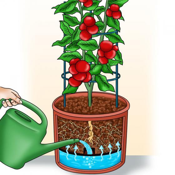 Pflanzturm Sonnengelb | #2