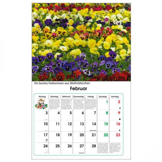 Gärtner Pötschkes Maxi-Blütenkalender | #2