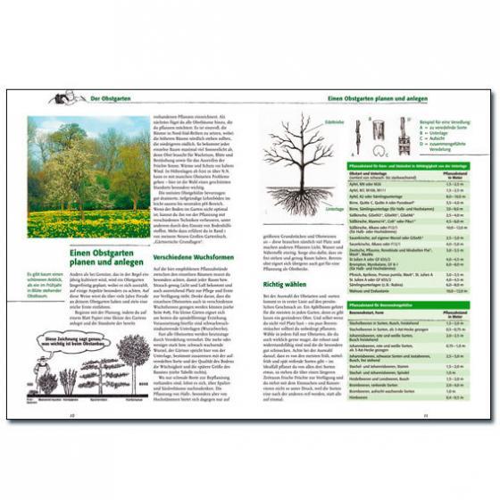 Neues Großes Gartenbuch, Obst, Band 3 | #2