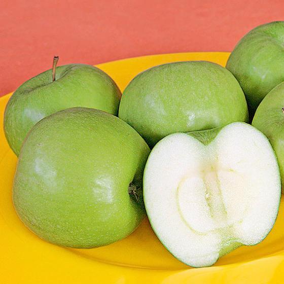 Apfel Granny Smith Compact, 2-jährig | #2