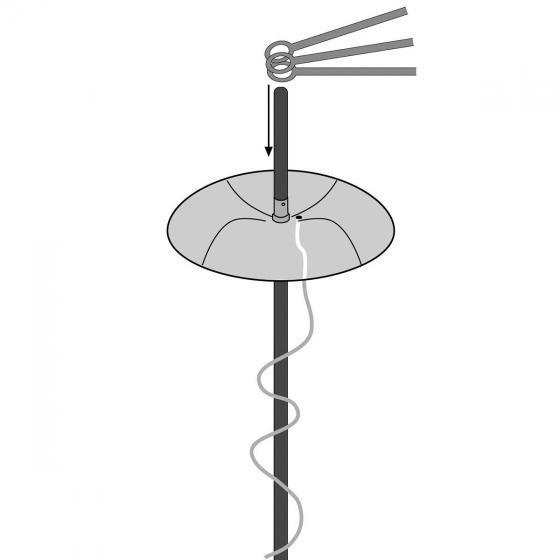 Tomatenhut Starter-Set, 3 Stück | #3