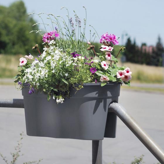 Geländertopf Flowerclip, 57,5 x 27,7 x 27 cm, anthrazit | #3