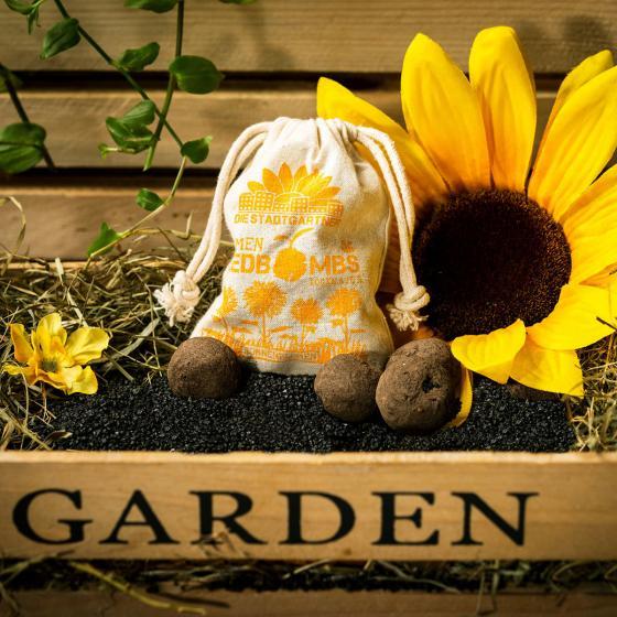 Blumen-Seedbombs Sonnenblumen | #3
