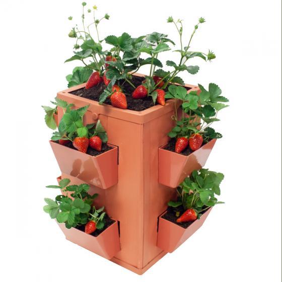 Gemüse- und Pflanzenturm | #3