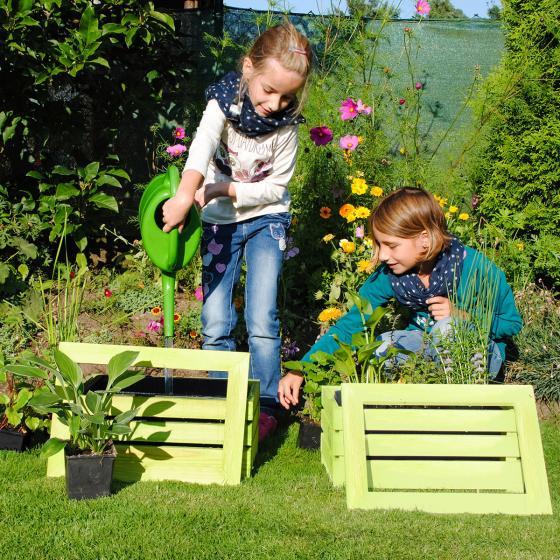 Mini-Teichholzkiste, 45x32x21 cm mit 4 Wasserpflanzen | #3