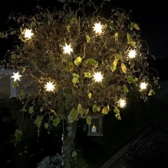 LED-Lichterkette Romantic, weiß | #3