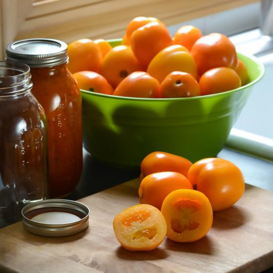 Tomatensamen Sunrise Sauce F1 | #3