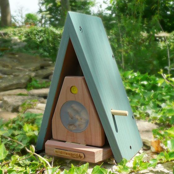 Schmetterlingshaus und -futterstelle Sonnengarten | #3