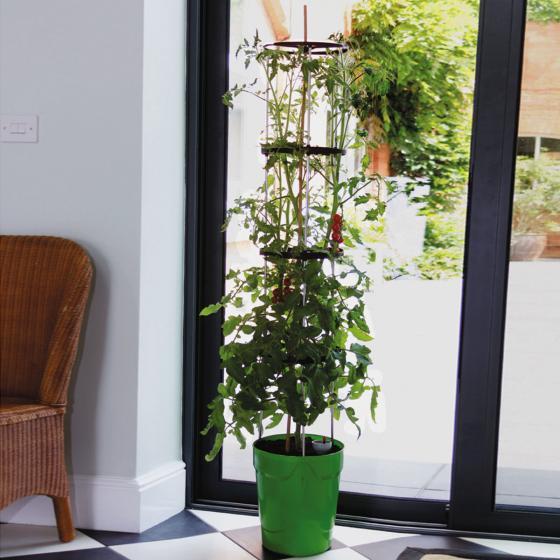 Tomaten-Pflanzturm Grow Tower, Durchmesser 28 cm, H 32 cm, Stütze 120 cm, grün | #3
