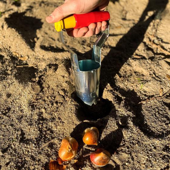 Zwiebelpflanzer Automatik | #3