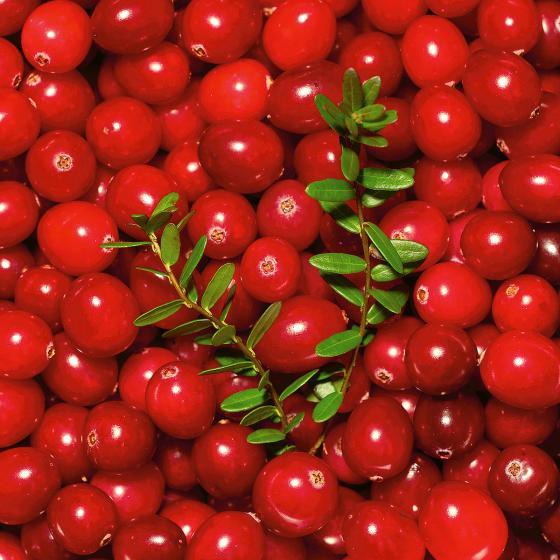 Blu Bio Cranberry | #3