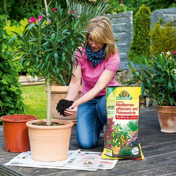 Neudorff NeudoHum® Mediterranpflanzen- und Palmenerde, 10 Liter | #3