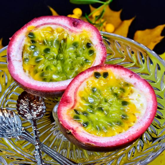 Purpur Passionsblume, im ca. 9 cm-Topf | #3