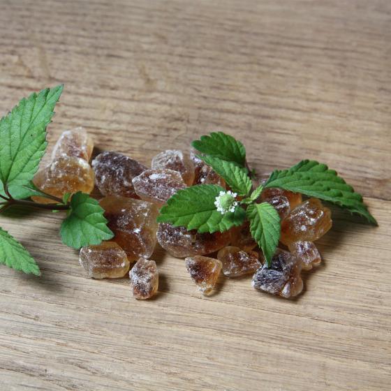 Bio Aztekisches Süsskraut | #3