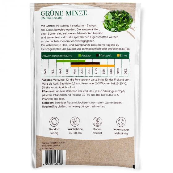 Minzesamen Grüne Minze | #3