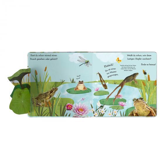 Wie wird die Kaulquappe zum Frosch? | #3