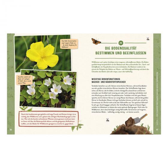 Die Insektenwiese: So summt & brummt es garantiert! | #3