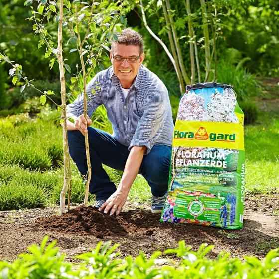 Florahum Pflanzerde, 70 Liter | #3