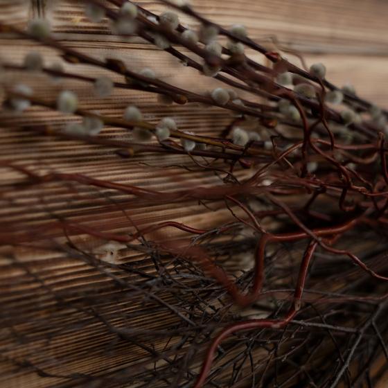 Osterschnittgrün-Set Nature | #3
