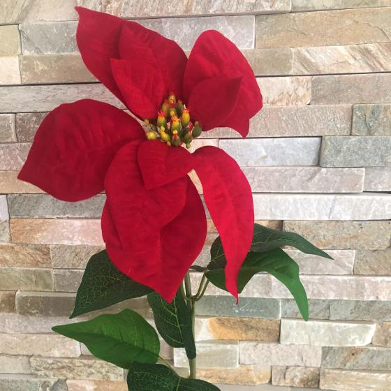 Kunstpflanze Poinsettia, rot   #3
