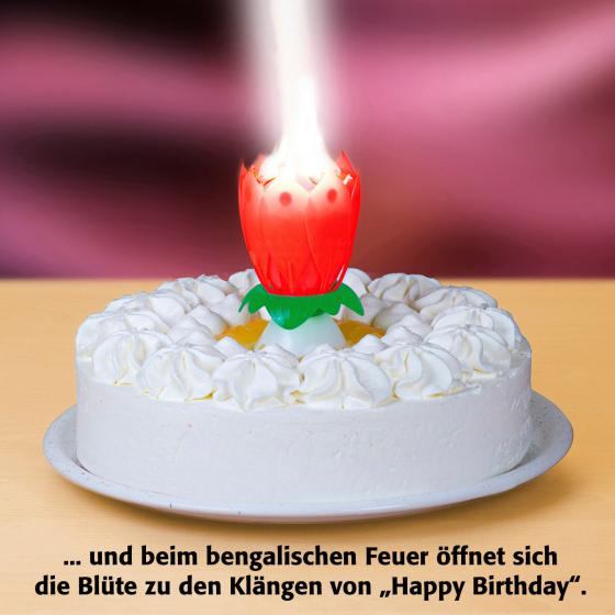 Musikalische Wunderkerze Happy Birthday | #3