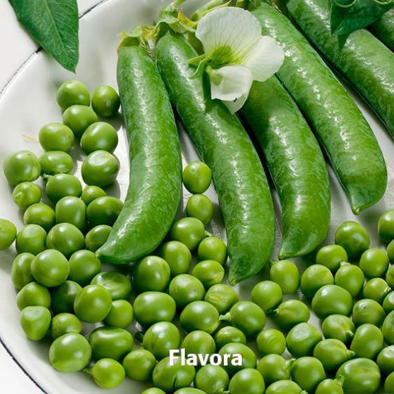 Gemüsesamen-Set Markerbsen Aloha und Flavora | #3