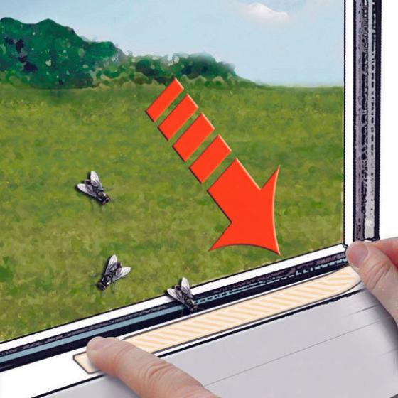 Permanent® Fliegenköder Streifen, 12 Stück | #3