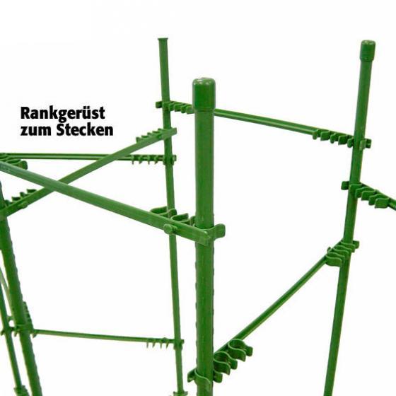 Pflanztasche rechteckig & Rankgerüst | #3