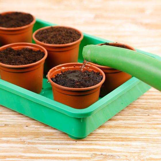 Balkon-Gemüse Anzucht-Set | #4