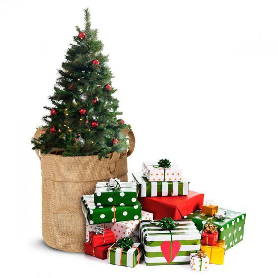 Weihnachtsbäumchen Saatgut im Jute-Anzuchtbeutel, inkl. 6 Liter Erde und Weihnachtskarte | #4