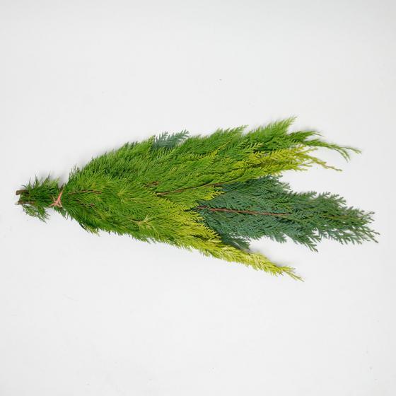 Koniferen-Handbund, grün 350 g | #4