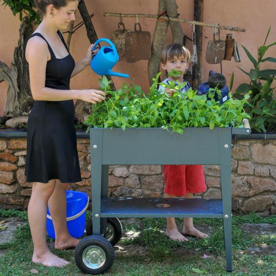 Herstera Urban Garden mit Rädern, anthrazit, 75x35x80 cm | #4