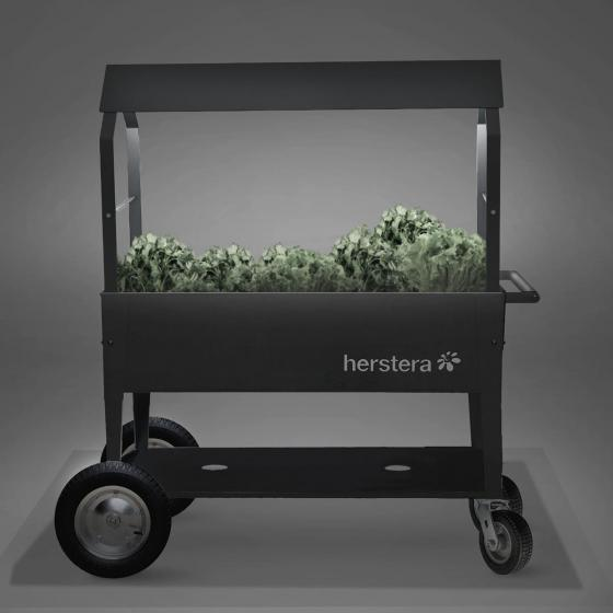Herstera Hochbeet Garden Swivel, anthrazit, 120x60x80 cm | #4