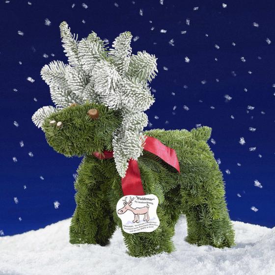 Waldemar der Weihnachtselch | #4