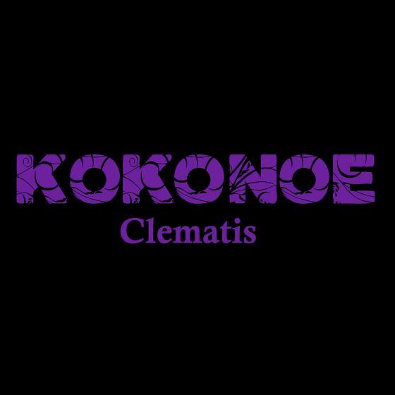 Clematis Kokonoe® | #4