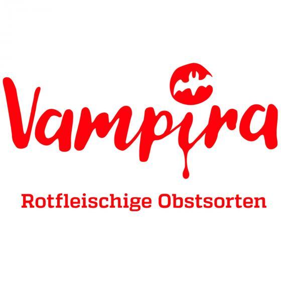 Apfel Vampira, im ca. 23 cm-Topf | #4