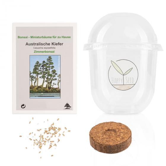 Bonsai Starter Kit Australischen Kiefer Grow2Go | #4