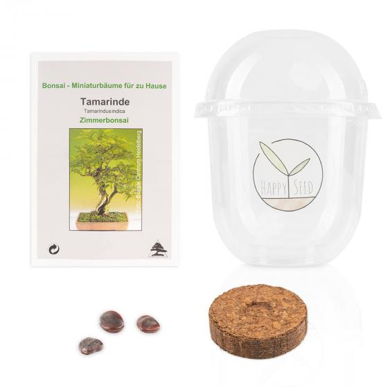 Bonsai Starter Kit Tamarinde Grow2Go | #4