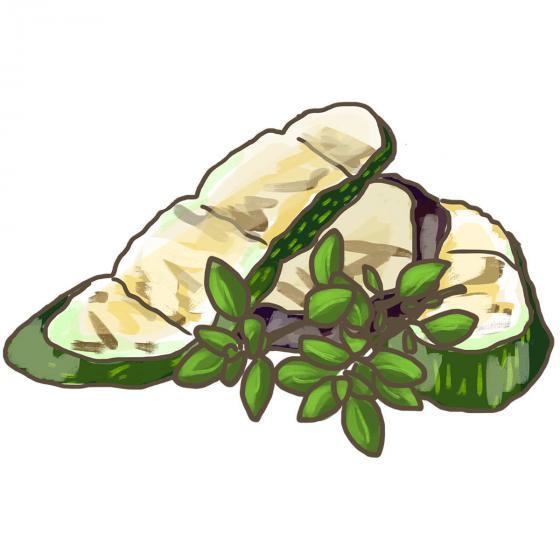 Blu Bio-Kräuterpflanze Gewürzthymian | #4