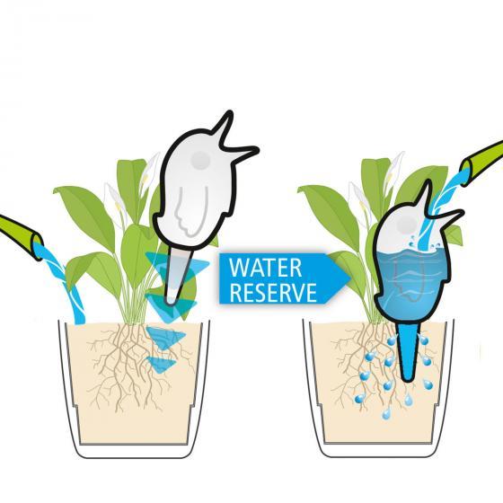 Bewässerungshilfe Bördy XXL, 1000 ml, Grün | #4