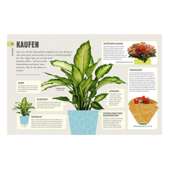 So überleben Zimmerpflanzen garantiert | #4
