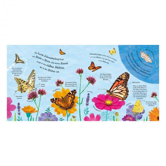 Wie wird die Raupe zum Schmetterling? | #4
