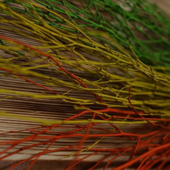 Osterschnittgrün-Set Frühlingserwachen | #4